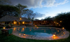 Lewa Wilderness laikipia