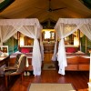 Samburu Intrepids Camp6