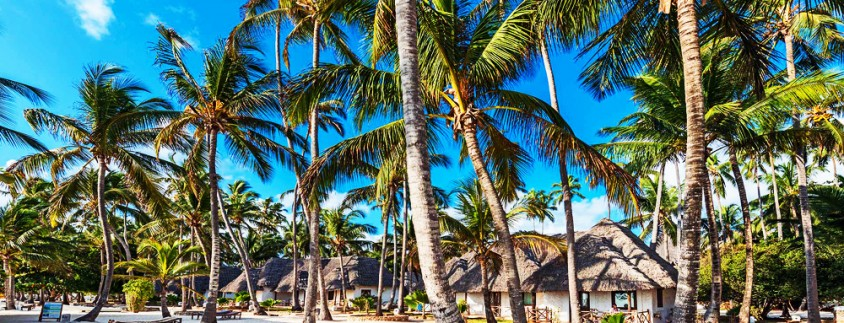Sandies Mapenzi Beach Club8