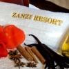 Zanzi Resort8