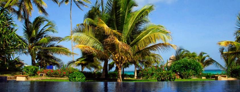 the palms zanzibar6