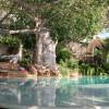 Peponi Hotel Lamu4