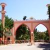 Sun 'N' Sand Beach Resort3